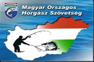 mohosz_valasztas_000