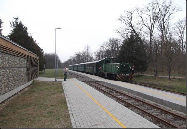 DSCF1336