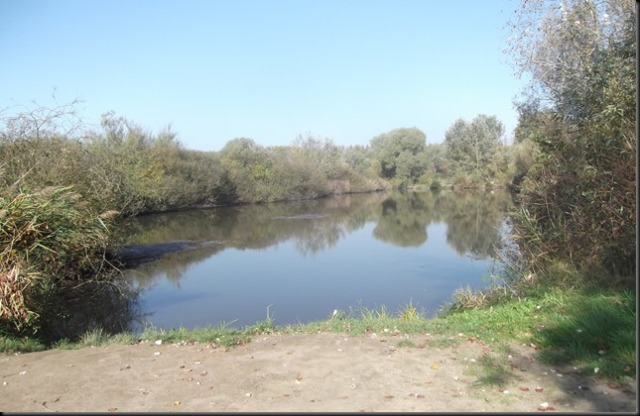 Tisztavizi-tó Nyíradony Tamási-puszta.
